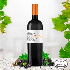 Grand vin de Terre Blanque, cuvée Valentin : vin bordeaux supérieur rouge 2016