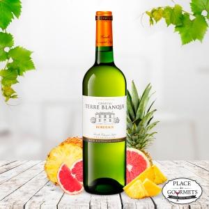 Vin blanc Château Terre Blanque : vin bordeaux blanc sec 2017