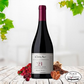 Cono Sur Single Vineyard Viento Mar 21 vin du Chili 2014