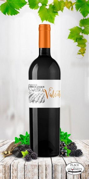 Grand vin Terre Blanque cuvee valentin